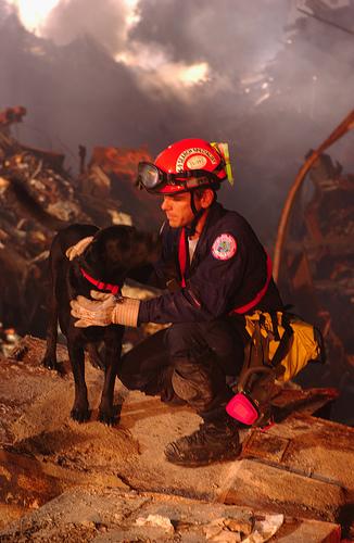 FEMA 5618 (9-11 SAR Dogs)