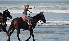 Little girl equestrian riding her horse in the...